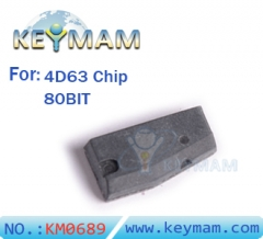Ford Mazda 4D63 Chip